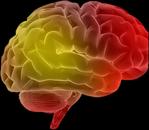 Brain Solve Collaboratively resized 600