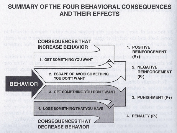 4 Rules Of Positive Reinforcement