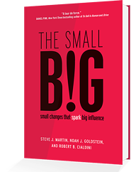 the small big book smaller resized 600