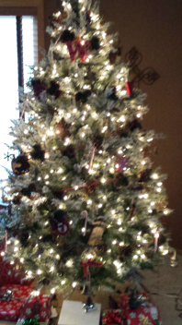 Christmas 2014 014 resized 600