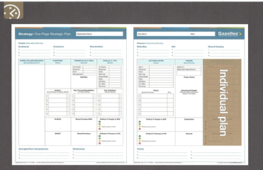 Individual Plan One Page Strategic Plan (IP) resized 600