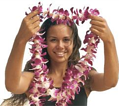 482720285 lei greeting xlarge resized 600