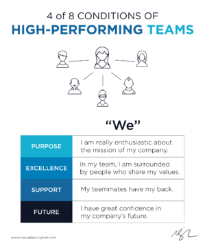 4 of 8 Conditions of High Performing Teams WE