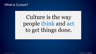 Culture is the way people think and act to get things done