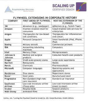 Flywheel Extensions in Corporate History