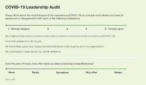 Gallup COVID 19 Audit