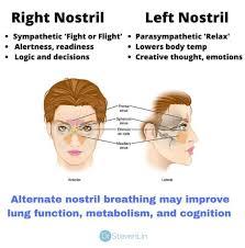 Right & Left Nostrils Breath