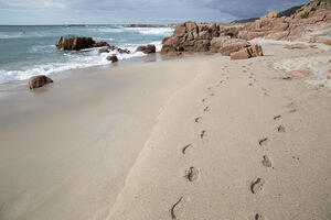 Footprints on Forcados Point Beach; Costa de la Muerte; Galicia; Spain