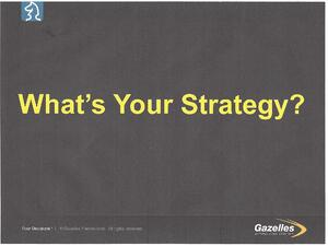 Whats Your Strategy