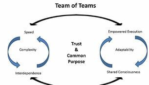Team_of_Teams_Shared_Consciousness0.jpg