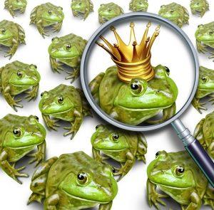 kissing-frog-prince-300x295.jpg